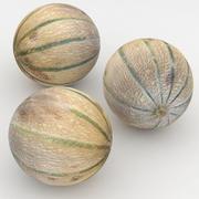 Melon Charentais 3d model