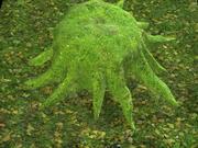 Toco de árvore coberto de musgo 3d model