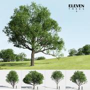 Eleven Trees 4 (+ Growfx) 3d model