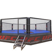 UFC Fighting Arena 3d model