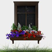 Петуния на окне 3d model