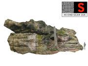 Penhasco da rocha da floresta 16K 3d model