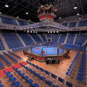 UFC arena 3d model