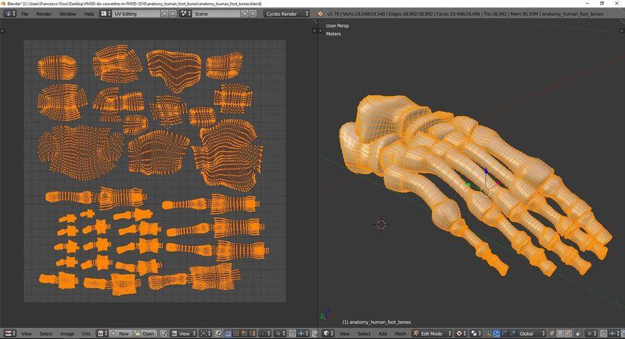 解剖学-人間の足の骨 royalty-free 3d model - Preview no. 10