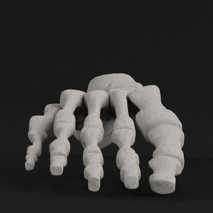 解剖学-人間の足の骨 royalty-free 3d model - Preview no. 3