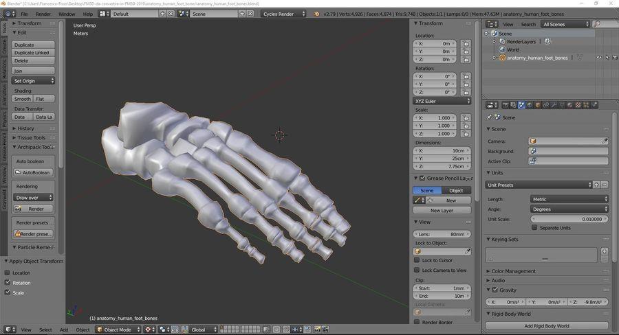 解剖学-人間の足の骨 royalty-free 3d model - Preview no. 9