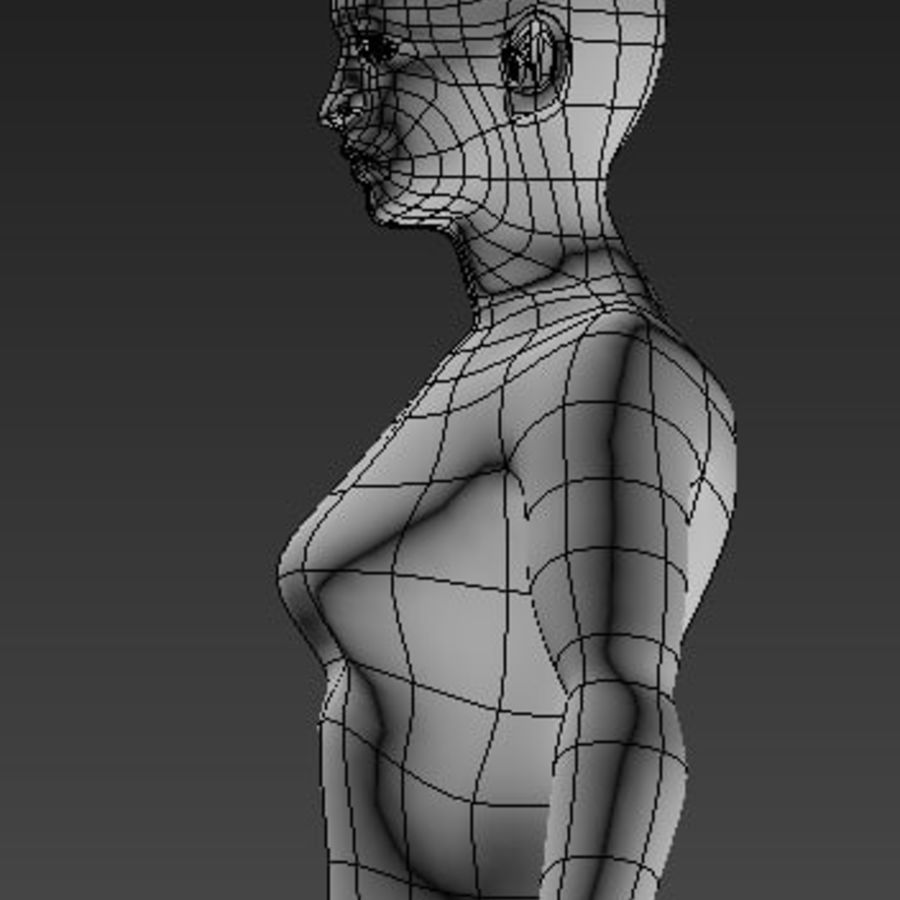 body royalty-free 3d model - Preview no. 3