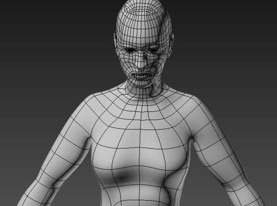 body royalty-free 3d model - Preview no. 1