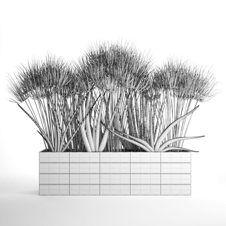 Rośliny tropikalne w doniczce royalty-free 3d model - Preview no. 10