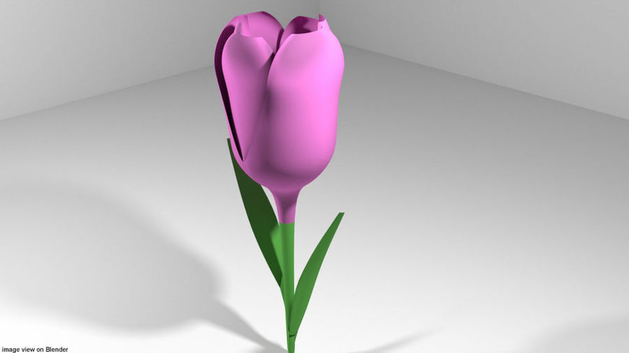 Fleur - Tulipe royalty-free 3d model - Preview no. 1