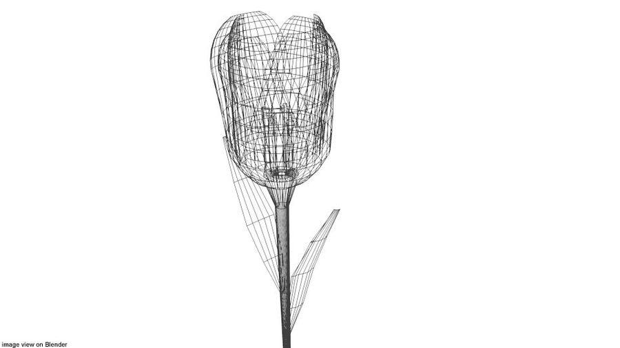 Fleur - Tulipe royalty-free 3d model - Preview no. 4