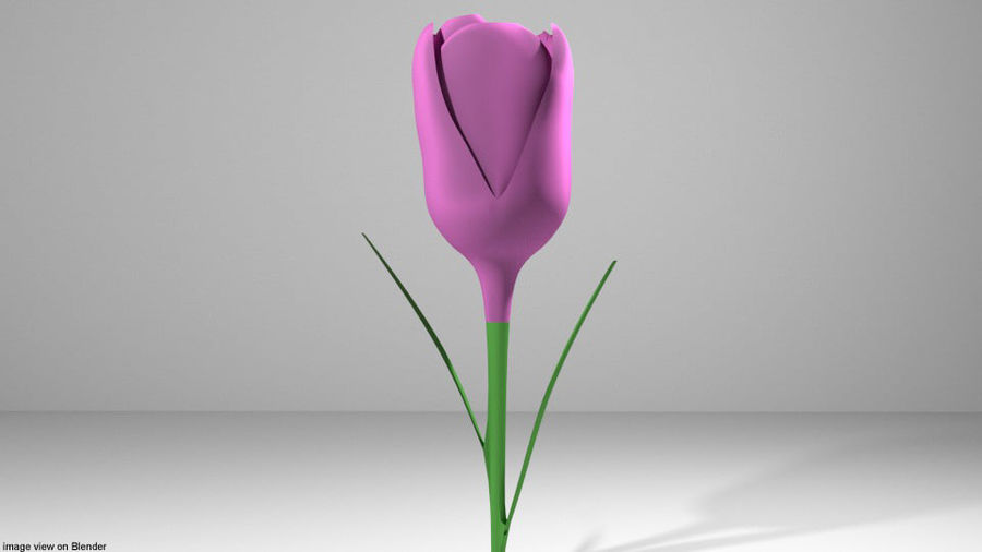 Fleur - Tulipe royalty-free 3d model - Preview no. 2