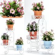 flower plant 118 3d model