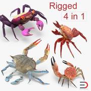 Collection de crabes gréés 3d model