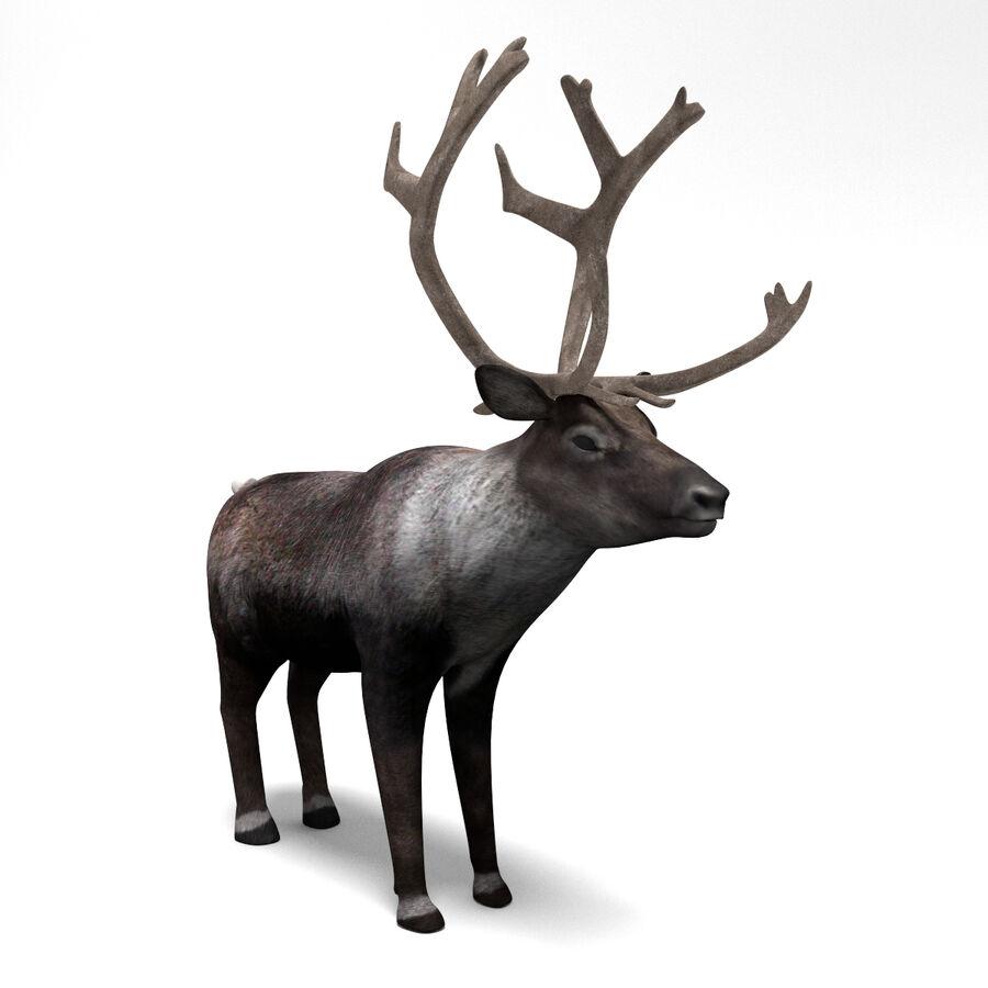 動物コレクション royalty-free 3d model - Preview no. 127