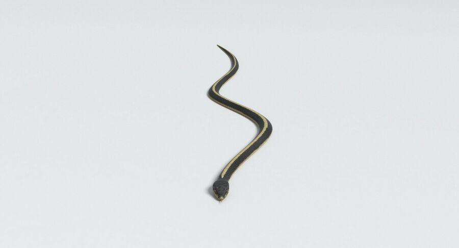 動物コレクション royalty-free 3d model - Preview no. 105