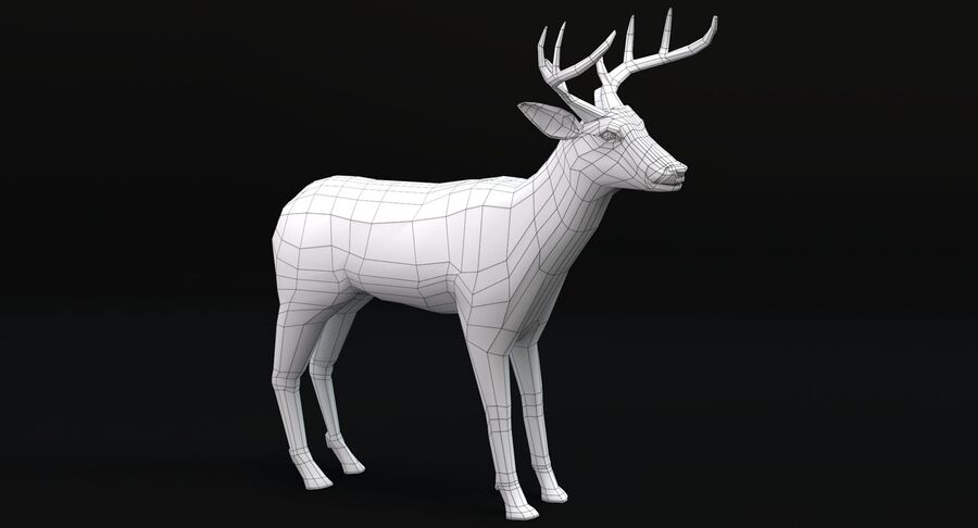 動物コレクション royalty-free 3d model - Preview no. 60