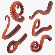 Octopus tentakels 3d model