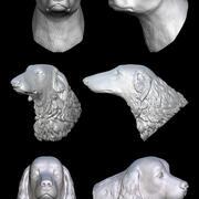 kolekcja głowy psa część 2 3d model