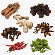 Spices Collection 3d model