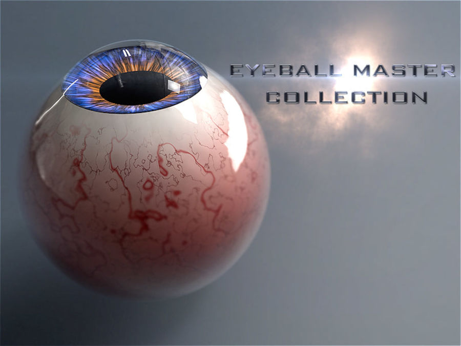 Realist Human Eye - With Rig royalty-free 3d model - Preview no. 11