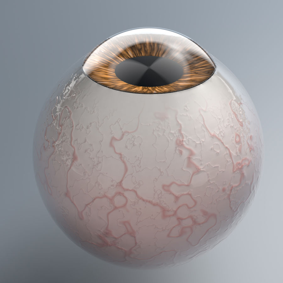 Realist Human Eye - With Rig royalty-free 3d model - Preview no. 3
