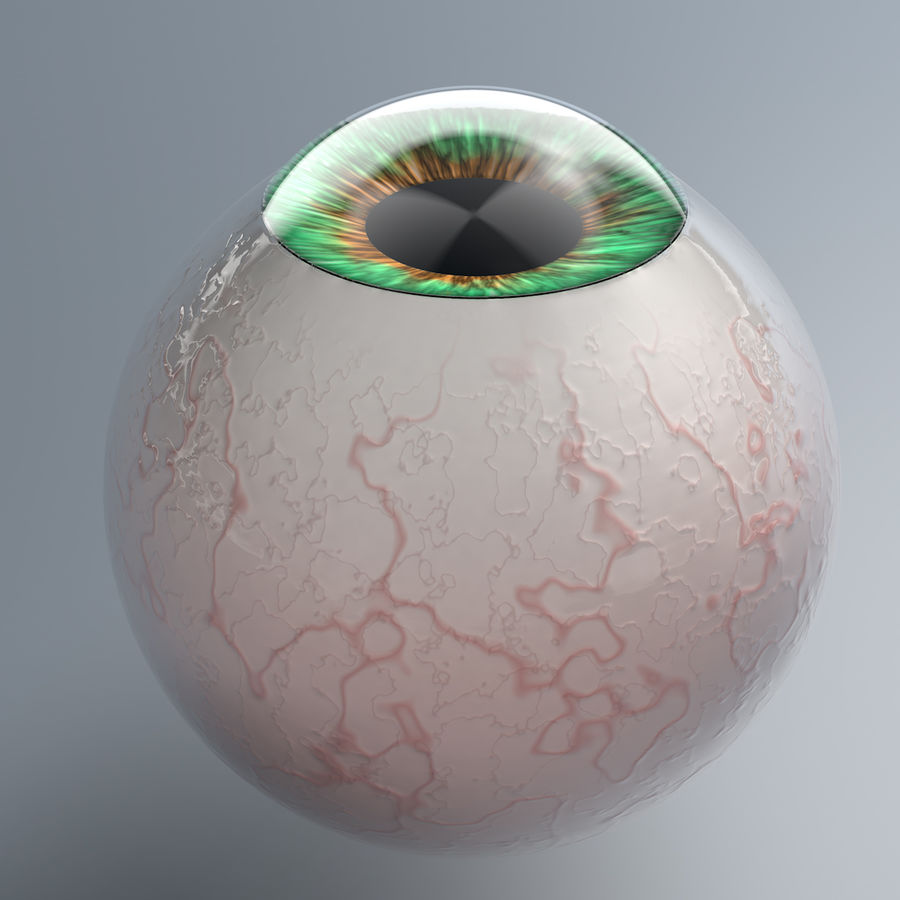 Realist Human Eye - With Rig royalty-free 3d model - Preview no. 4