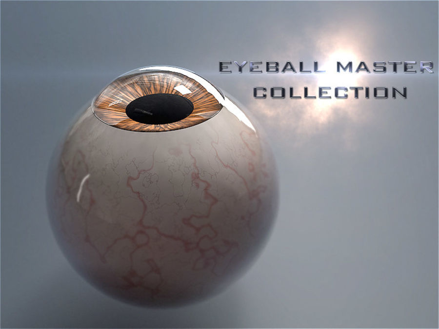 Realist Human Eye - With Rig royalty-free 3d model - Preview no. 13