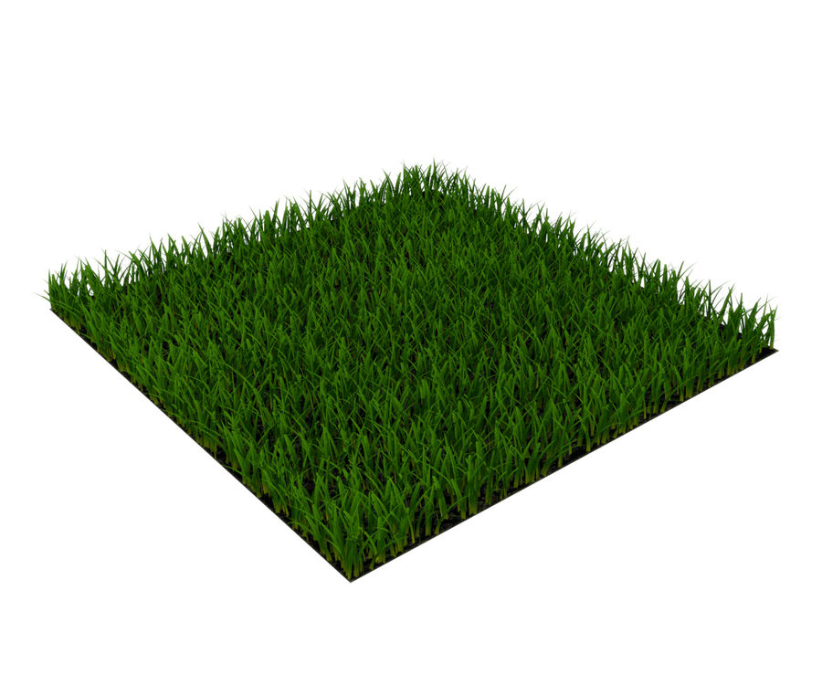 herbe royalty-free 3d model - Preview no. 1