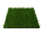gräs 3d model