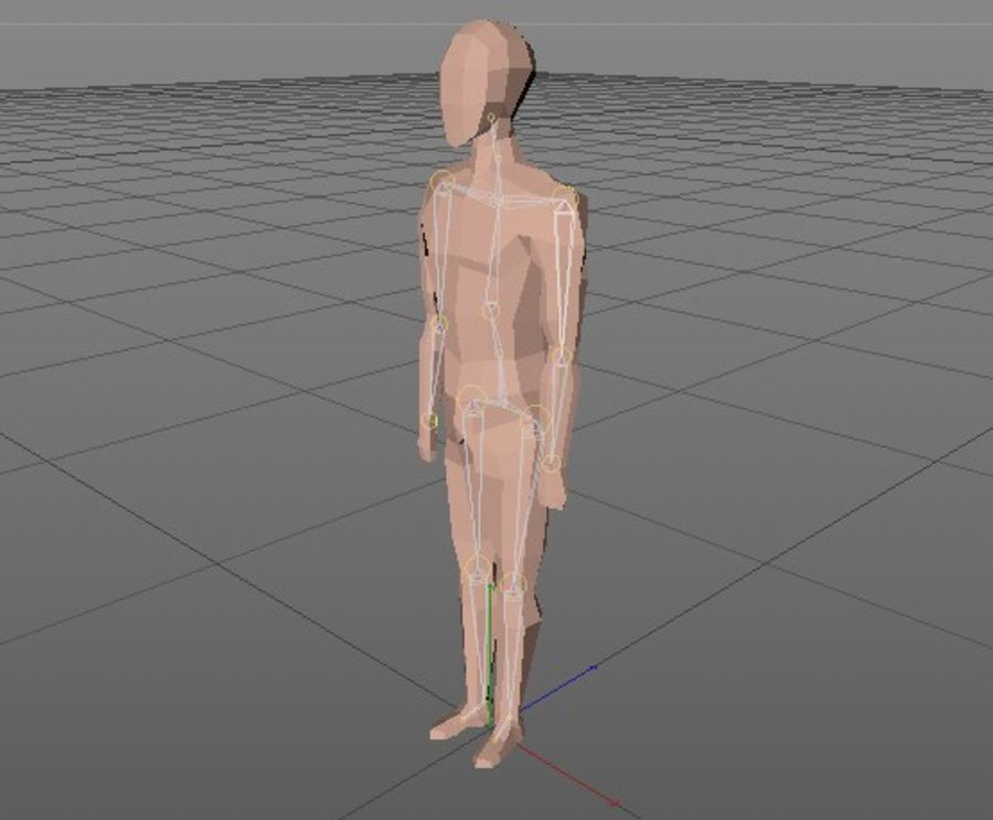 LowPoly basic character (Rigged) royalty-free 3d model - Preview no. 6