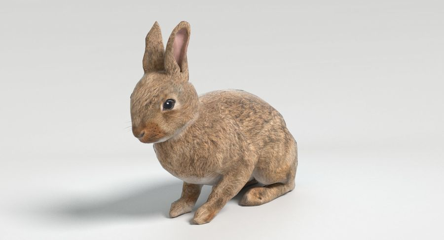 Animated Game Rabbit royalty-free 3d model - Preview no. 8