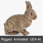 Animated Game Rabbit 3d model