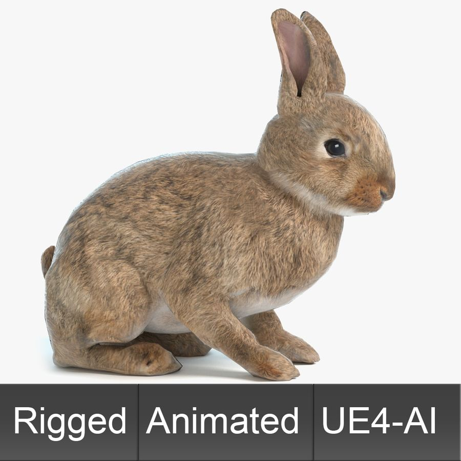 Animated Game Rabbit royalty-free 3d model - Preview no. 1