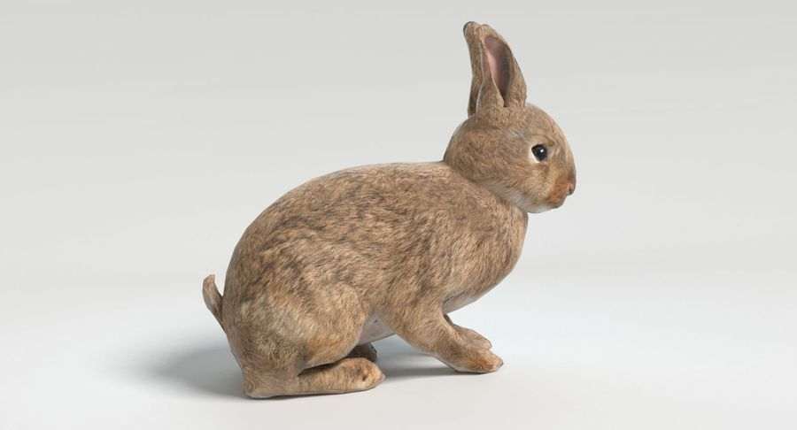 Animated Game Rabbit royalty-free 3d model - Preview no. 4