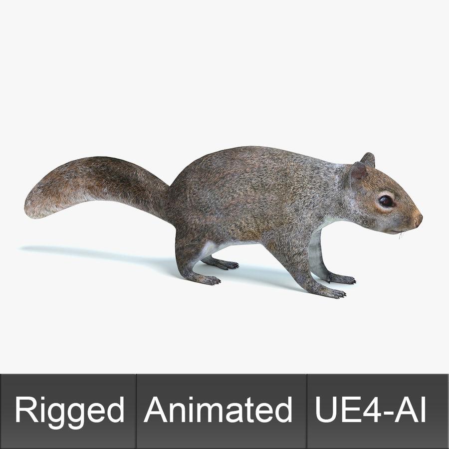 Animated Game Squirrel 3D Model $49 -  upk  obj  fbx  dae