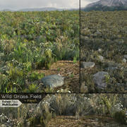 Wild Grass Field (Real-time) 3d model