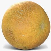 Melon 3 3d model