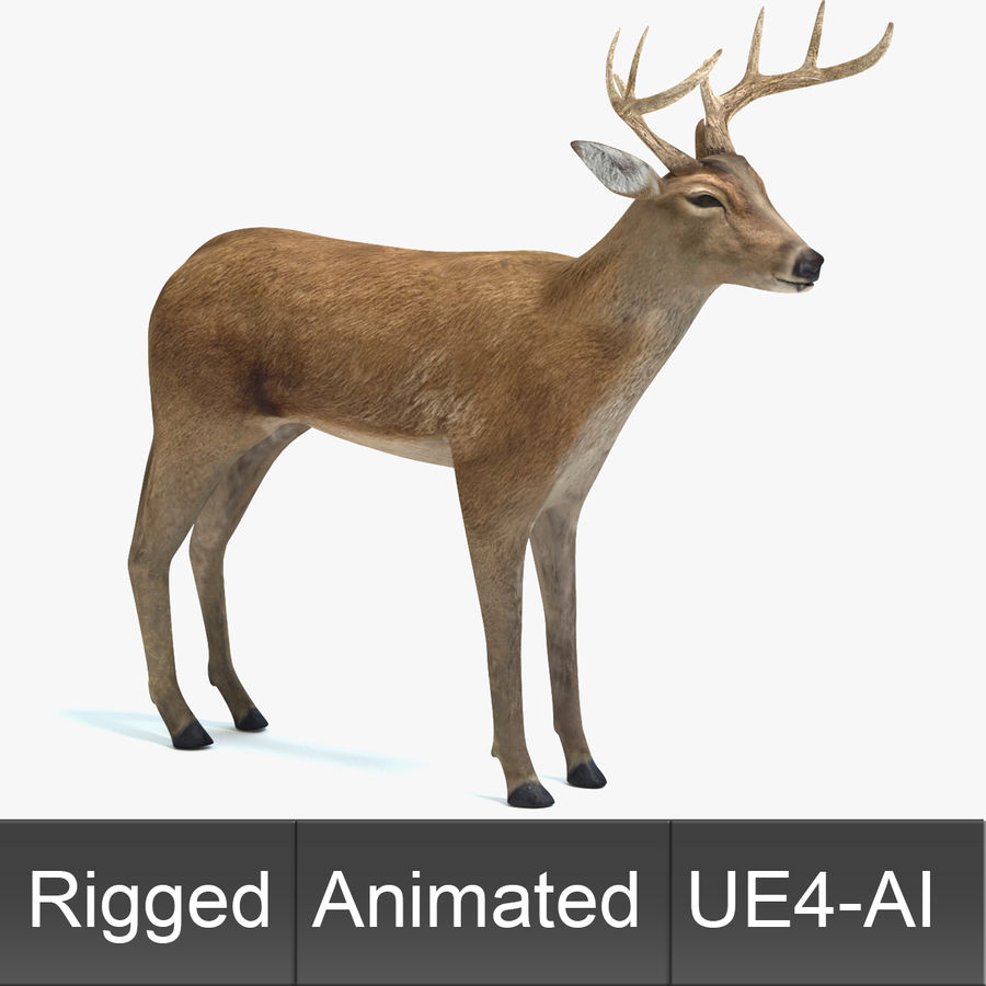 Animated Game Deer 3D Model $49 -  upk  obj  fbx  dae  blend  3ds