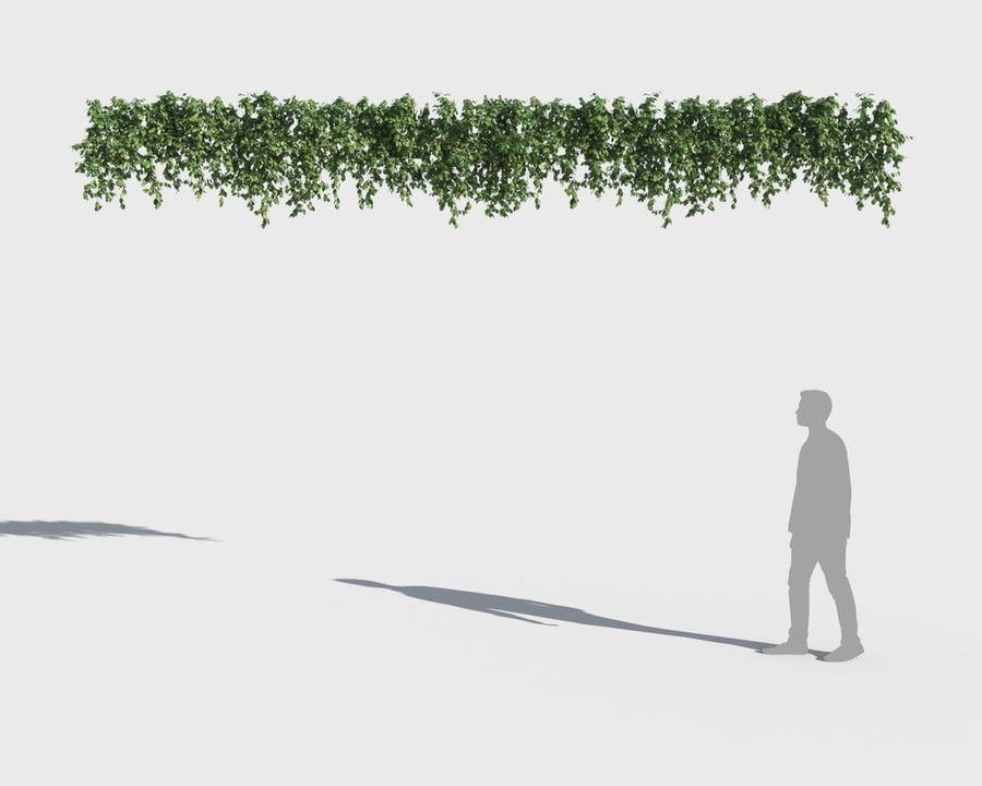 Коллекция вьющихся растений royalty-free 3d model - Preview no. 6