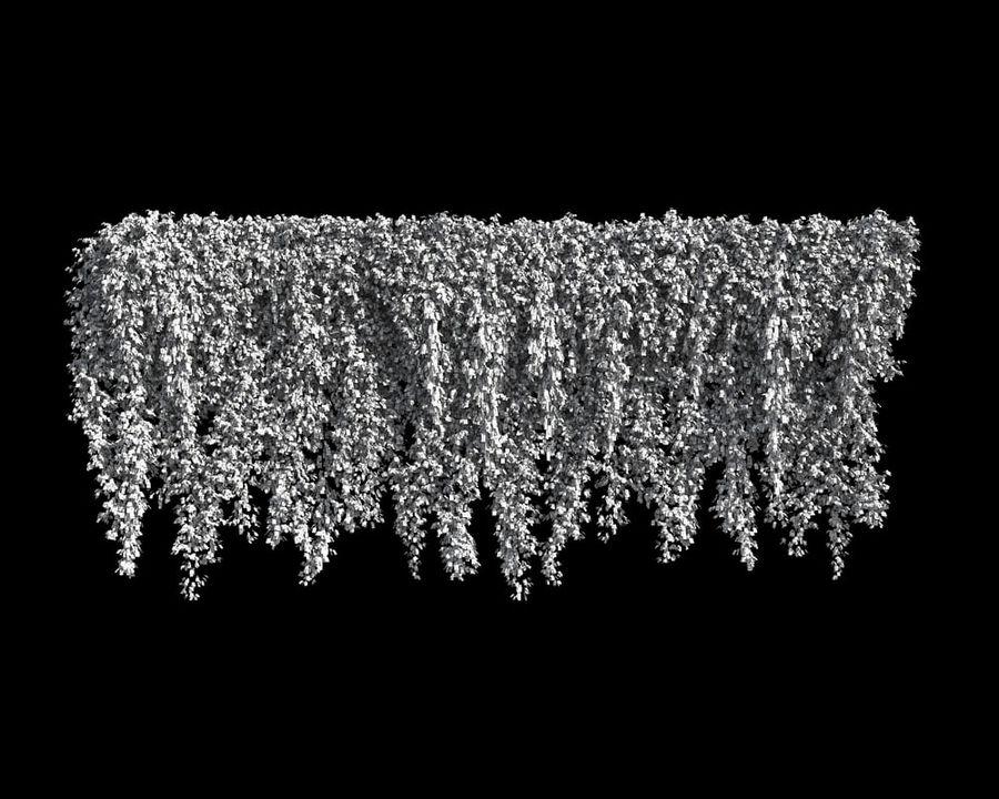 Коллекция вьющихся растений royalty-free 3d model - Preview no. 13