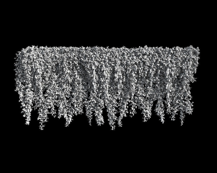 Colección de plantas trepadoras (+ GrowFX) royalty-free modelo 3d - Preview no. 13