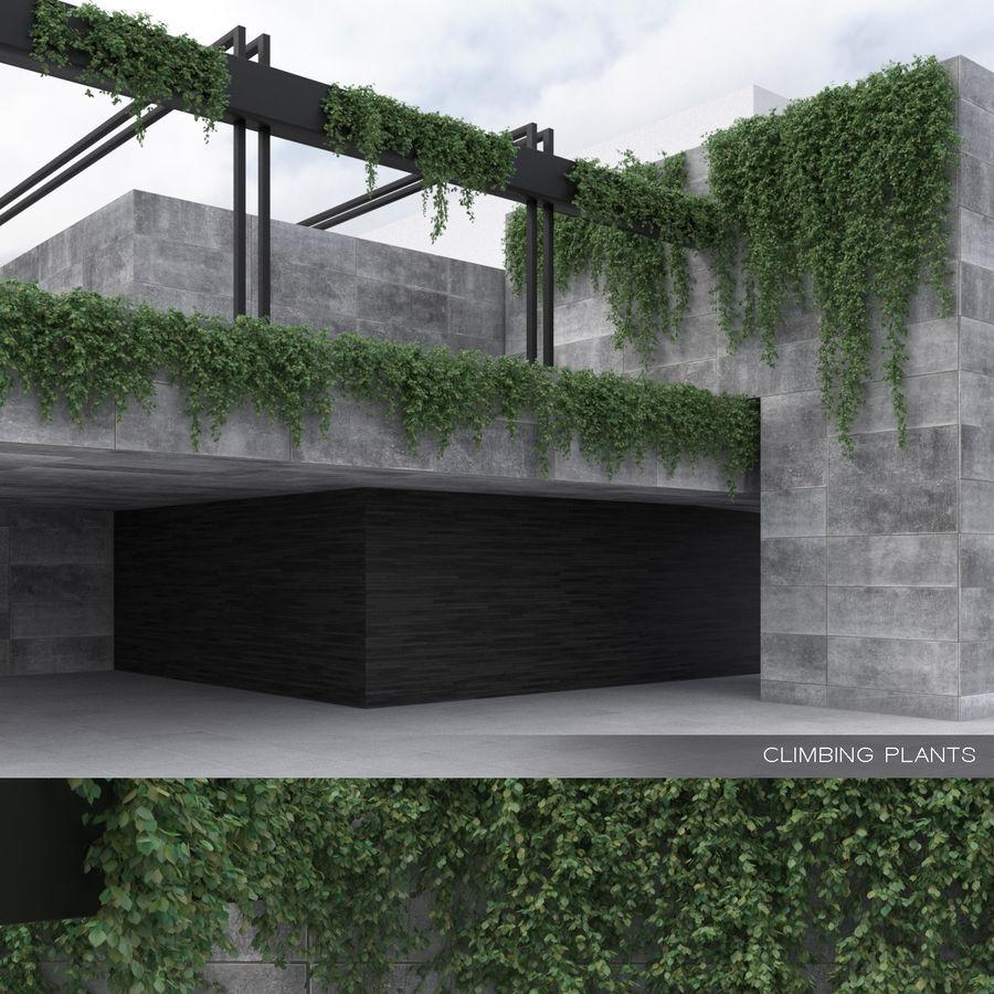 Colección de plantas trepadoras (+ GrowFX) royalty-free modelo 3d - Preview no. 1