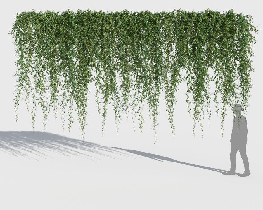 Коллекция Скалолазных Растений (+ GrowFX) 2 royalty-free 3d model - Preview no. 12