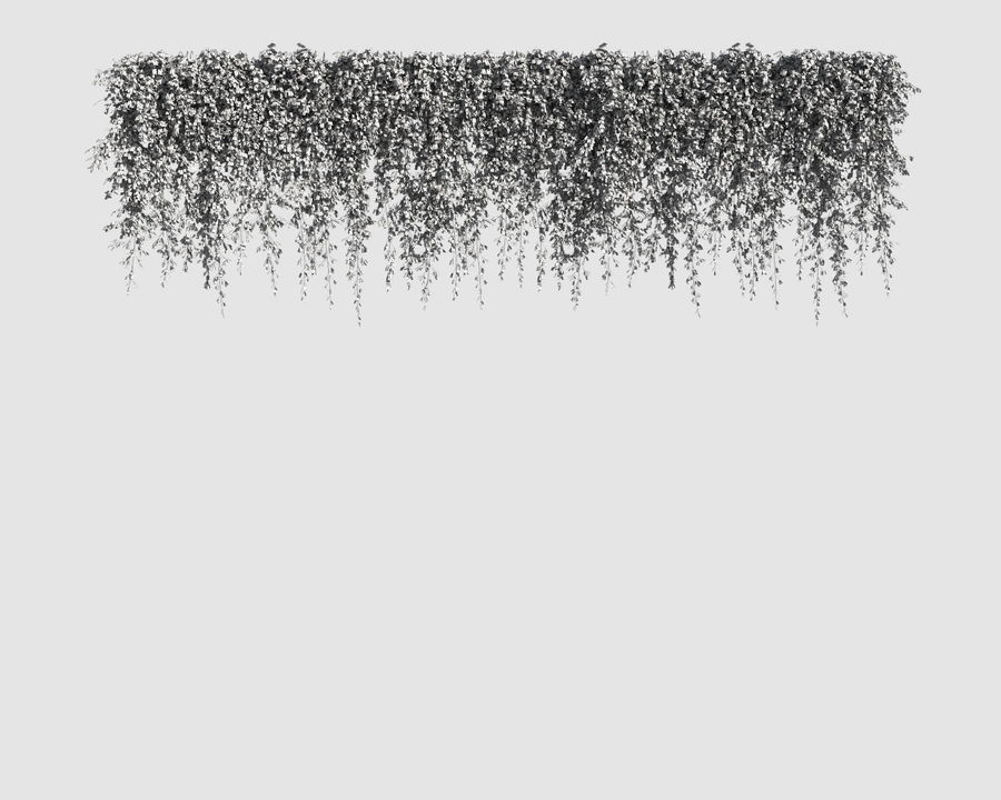 Climbing Plants Collection (+GrowFX) 2 royalty-free 3d model - Preview no. 15