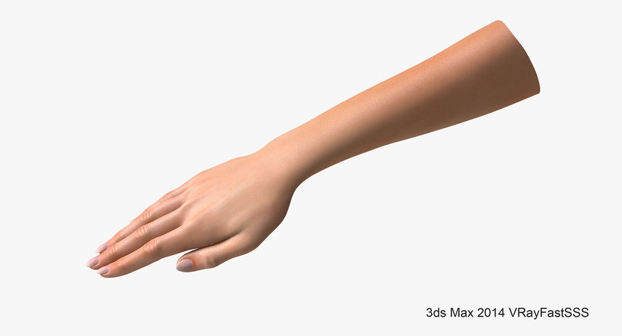 Female Arm A (Pose C Textured) royalty-free 3d model - Preview no. 5