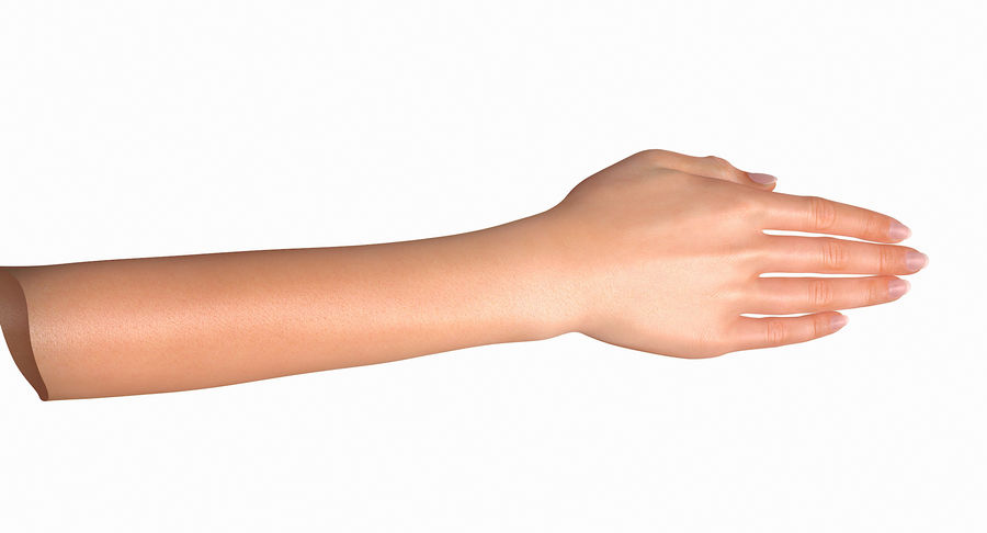 Female Arm A (Pose C Textured) royalty-free 3d model - Preview no. 24