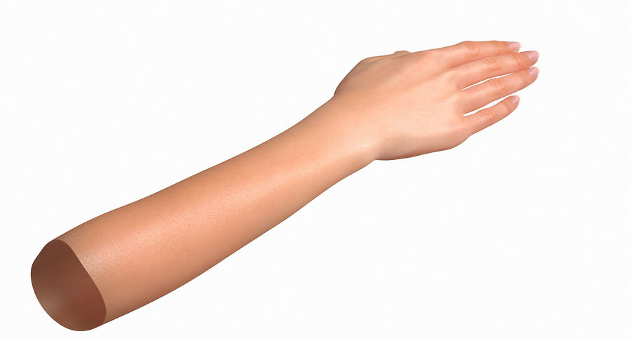 Female Arm A (Pose C Textured) royalty-free 3d model - Preview no. 15