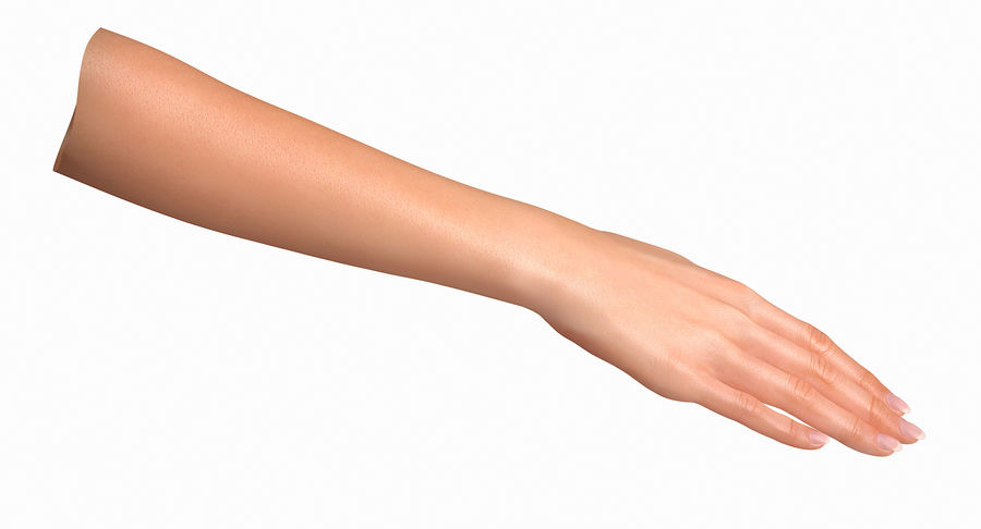 Female Arm A (Pose C Textured) royalty-free 3d model - Preview no. 13