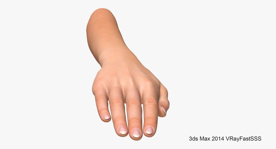 Female Arm A (Pose C Textured) royalty-free 3d model - Preview no. 4